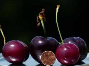 cherries-167811_1280